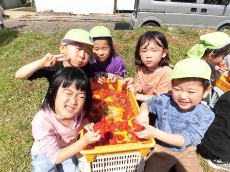 4/20(火) いちご狩り�